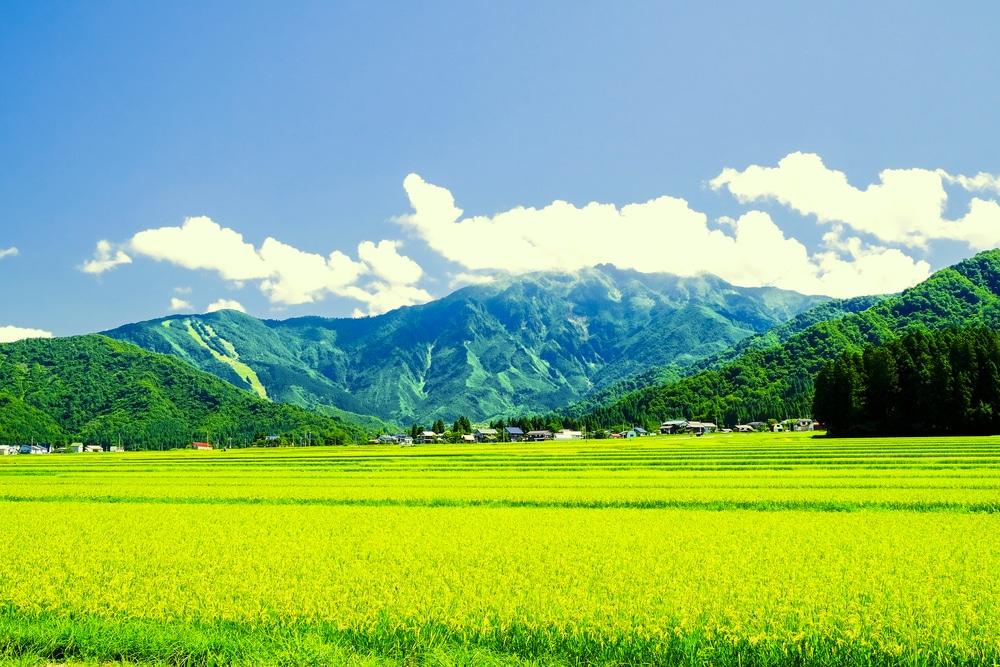 新潟県でファクタリング 銀行融資・借入NGからの資金調達方法